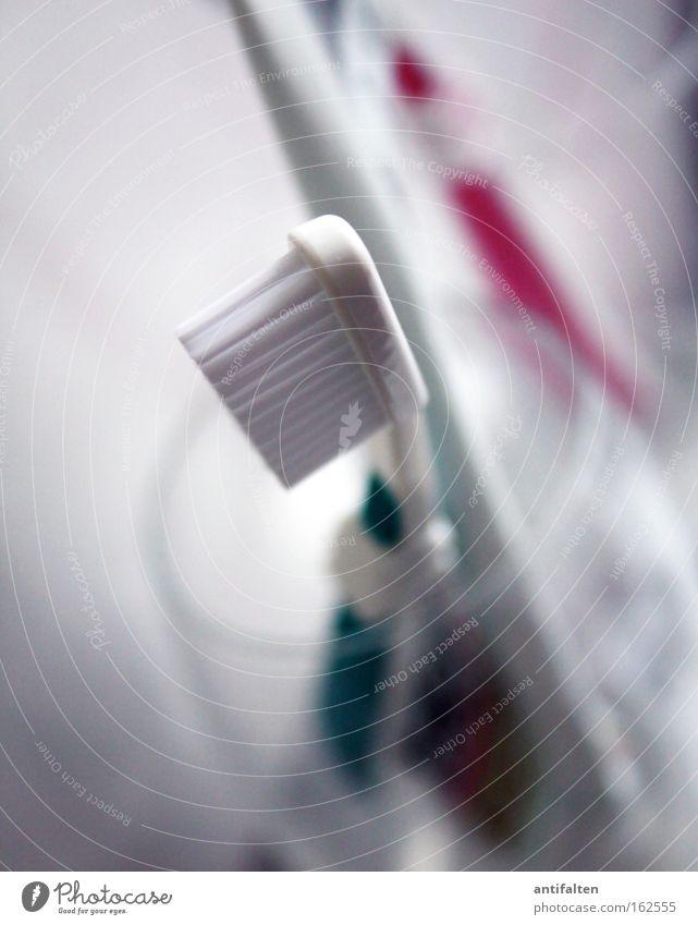 Zahnpflege mal 2 Gesundheit Glas Sauberkeit Bad Körperpflege Objektfotografie Borsten Zahnbürste Zahnputzbecher