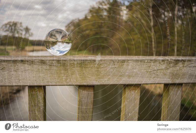 Schöne Aussicht Umwelt Natur Landschaft Pflanze Tier Frühling Wiese Feld Wald Flussufer Glas Stimmung Lebensfreude Brücke Glaskugel Farbfoto mehrfarbig