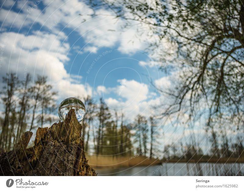 zeitlos Umwelt Natur Landschaft Pflanze Tier Wasser Frühling Sommer Herbst Wellen Küste Seeufer Bach Fluss Erholung Glaskugel Farbfoto mehrfarbig Außenaufnahme