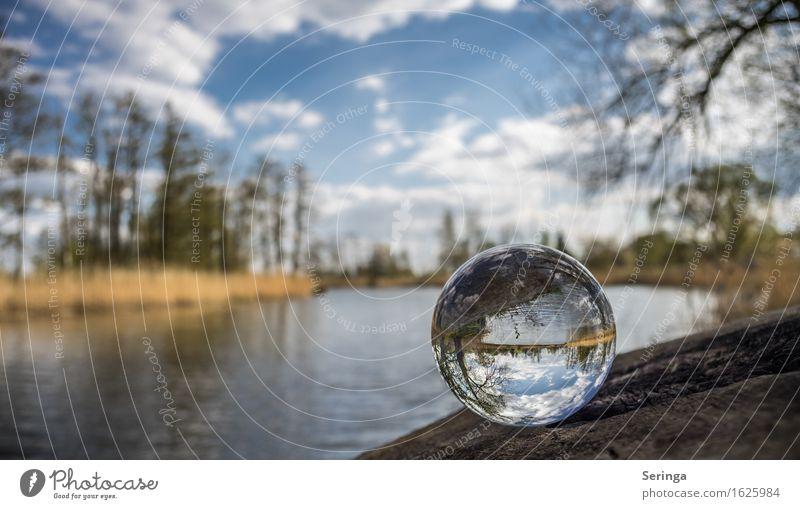 Glaskugel Freizeit & Hobby Ferien & Urlaub & Reisen Freiheit Sommer Umwelt Natur Landschaft Pflanze Tier Wasser Frühling Baum Garten Teich Fluss fantastisch