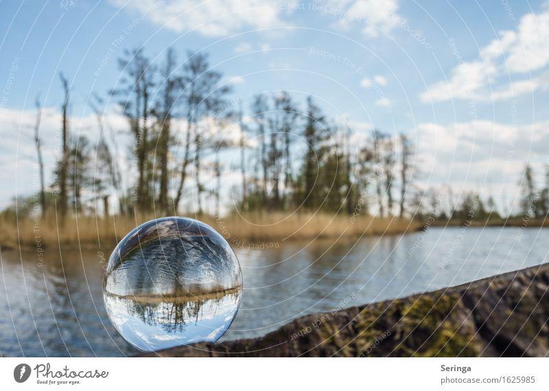 Im Auge des Betrachters Freizeit & Hobby Ferien & Urlaub & Reisen Ausflug Freiheit Sommer Seeufer Teich Fluss Glas Kugel Frühlingsgefühle Glaskugel Flussufer
