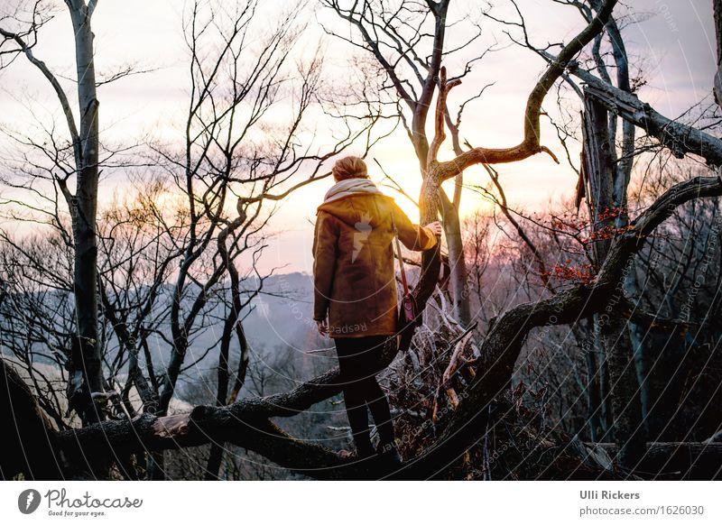 entwurzelt II wandern Klettern Bergsteigen feminin Junge Frau Jugendliche Erwachsene 1 Mensch 18-30 Jahre Umwelt Natur Landschaft Himmel Frühling Schönes Wetter