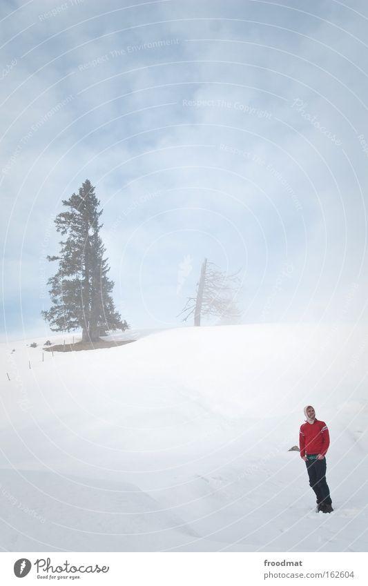god's silence Himmel Baum rot Winter kalt Schnee Berge u. Gebirge Nebel trist Macht Schweiz Sturm Surrealismus Kapuze kahl sehr wenige