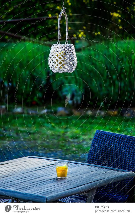 Kerzenlaterne und Tisch schön Dekoration & Verzierung Lampe Feste & Feiern Baum Holz Ornament alt dunkel neu grün rot weiß Tradition Antiquität Atmosphäre