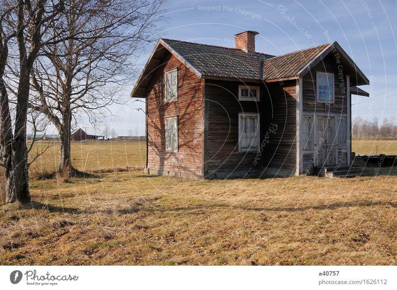Himmel blau grün Baum Haus Holz leer kaputt abgelegen ländlich Schweden Haufen anlehnen spukhaft verwohnt herunterhängend