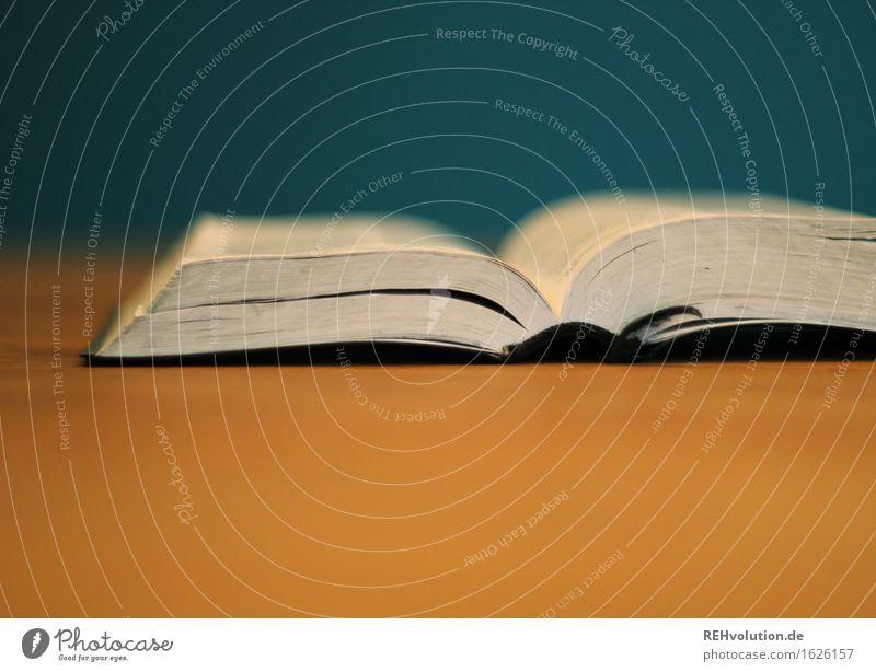 Bibel lernen Buch lesen liegen alt fleißig diszipliniert Ausdauer Hoffnung Glaube einzigartig Gerechtigkeit Christentum Gott heilig Religion & Glaube