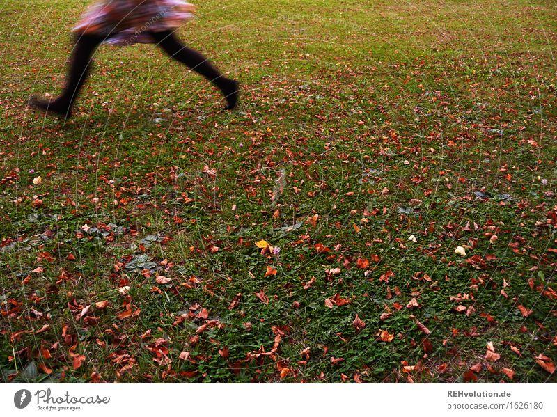 schnell weg Mensch feminin Beine Fuß 1 18-30 Jahre Jugendliche Erwachsene Umwelt Natur Wiese Rock laufen rennen Geschwindigkeit Flucht Angst flüchten Bewegung
