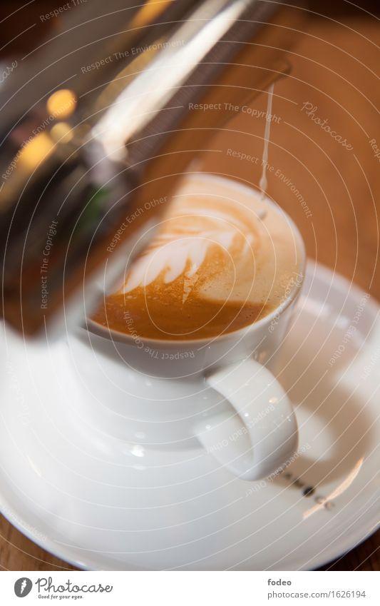 cappuccino Kaffeetrinken Getränk Heißgetränk Milch Cappuccino Tasse Zufriedenheit Duft Häusliches Leben Küche Dienstleistungsgewerbe Feste & Feiern genießen