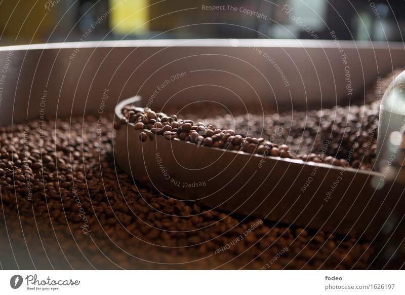 coffee beans in mixer Kaffeetrinken Heißgetränk Espresso Sinnesorgane Duft Industrie Mischmaschine dehydrieren fest heiß natürlich rund braun Leidenschaft