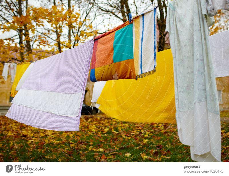 Leuchtend bunte Wäsche, die im Hof getrocknet wurde. Garten Landschaft Herbst Park Stoff hell blau gelb rot Farbe Leinen farbenfroh Hinterhof Hintergrund