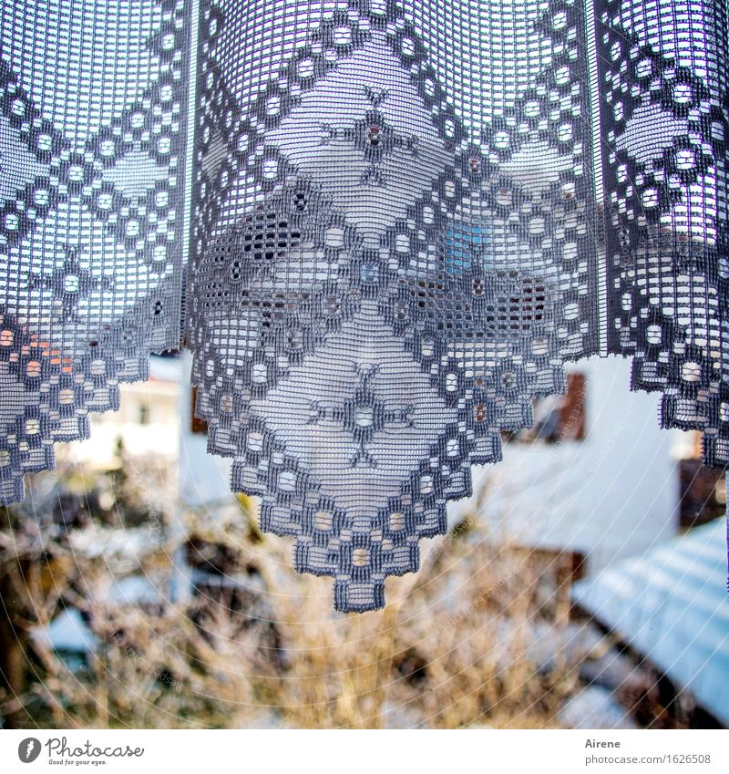noch'n Zacken zulegen Wohnung Dekoration & Verzierung Raum Fenster Fensterscheibe Gardine Vorhang Muster Blumenmuster Zickzack Stoff Ornament Linie beobachten