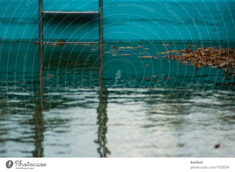 kindheitserinnerung Freibad Schwimmbad Leiter Wasser nass tauchen Blatt Verfall Zeit verfallen Algen dreckig Vergänglichkeit