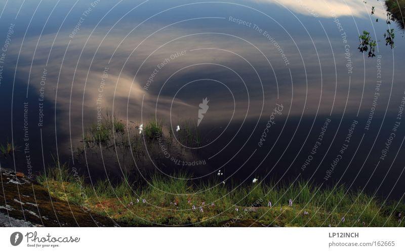 Traumwelt Lofoten Himmel Natur blau Wasser grün schön Ferien & Urlaub & Reisen Blume Blatt Wolken Erholung Umwelt Berge u. Gebirge Gras träumen elegant
