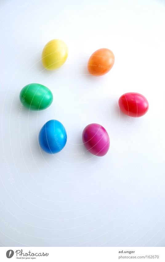 Osterkreis Farbkreis Ei Farbenwelt mehrfarbig Ostern colored circle