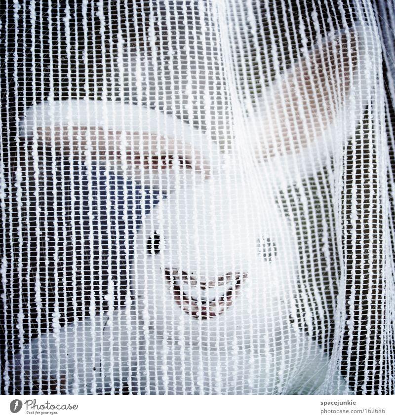Behind the curtain Hase & Kaninchen Ostern verrückt Freak Osterei lachen Ohr Gardine Versteck Freude Osterhase