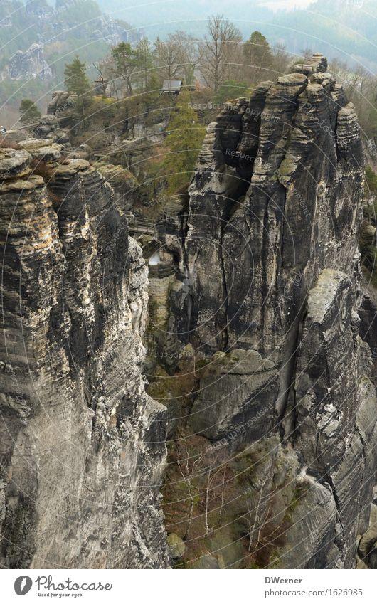 Sandsteingebirge Natur Ferien & Urlaub & Reisen Baum Landschaft Ferne Berge u. Gebirge Umwelt Felsen Wetter Nebel Freizeit & Hobby elegant Erde wandern Ausflug