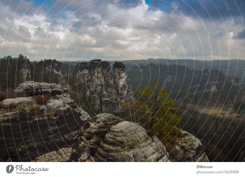 Sandsteingebirge Himmel Natur Ferien & Urlaub & Reisen Baum Landschaft Wolken Ferne Berge u. Gebirge Umwelt Freiheit Stein Felsen Tourismus Freizeit & Hobby