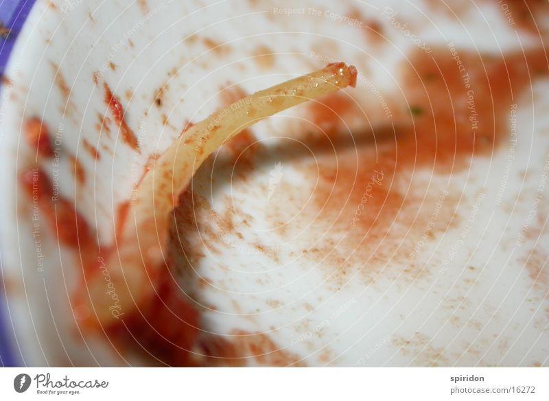 die pasta pipeline Teller Nudeln Tomate Spaghetti Saucen