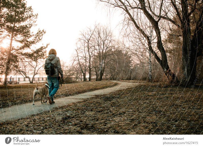 Junge Frau geht mit ihrem Hund am Abendpark. Mensch Natur Ferien & Urlaub & Reisen Jugendliche Sommer Baum Tier 18-30 Jahre Erwachsene Umwelt Frühling Gras