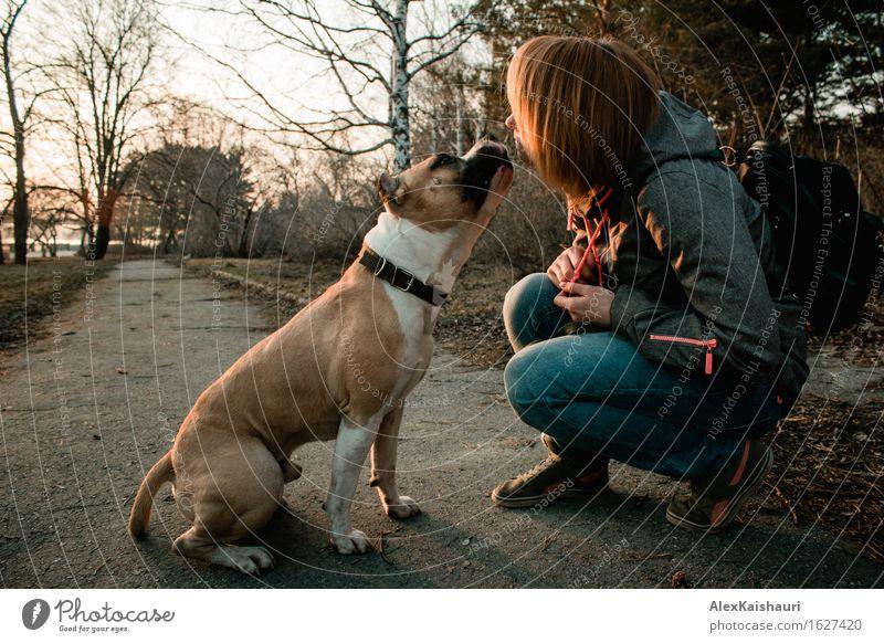 Junge Frau zeigt ihrem Hund im Abendpark Liebe. Mensch Natur Ferien & Urlaub & Reisen Jugendliche Sommer Baum Tier 18-30 Jahre Erwachsene Umwelt Frühling