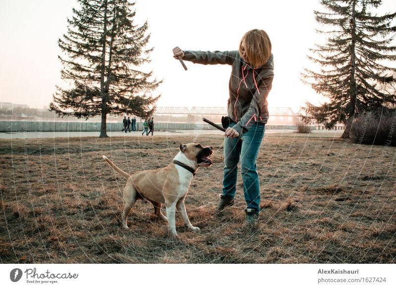 Junge Frau spielt mit ihrem Hund am Abendpark. Mensch Natur Ferien & Urlaub & Reisen Jugendliche Sommer Sonne Baum Tier 18-30 Jahre Erwachsene Umwelt Frühling