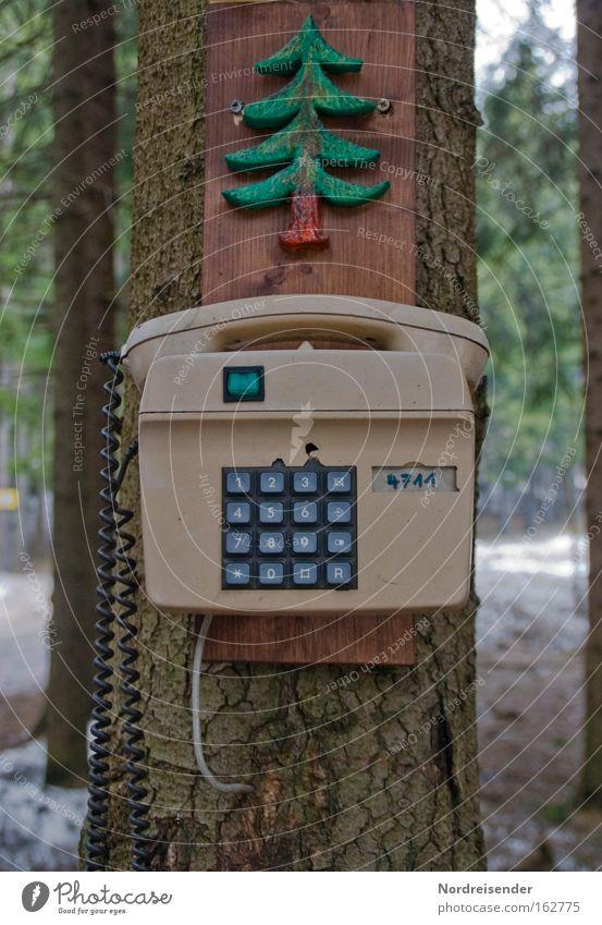 Hier werden sie geholfen Natur alt Baum Freude Winter Wald Holz außergewöhnlich Erfolg verrückt Telekommunikation Telefon Idee Kunststoff hören