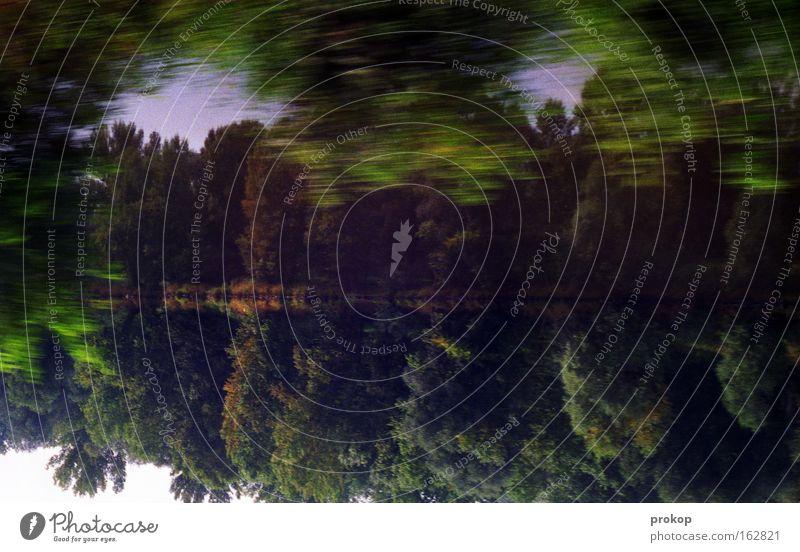 Sturmgestürm Wald See Baum Reflexion & Spiegelung Natur Geschwindigkeit Umwelt Himmel Blatt Wasser Teich Gewässer Alkoholisiert Rausch analog