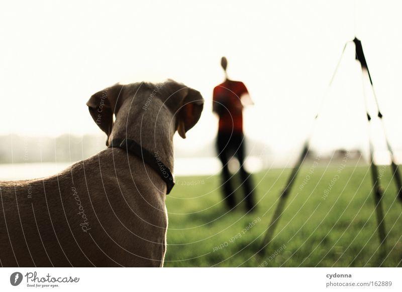 [DD|Apr|09] Aufmerksam Wiese Stativ Paar Silhouette Sehnsucht Frühling Zusammensein Vertrauen Mensch Ferne Unschärfe Wachsamkeit Hund hören Natur gehorchen