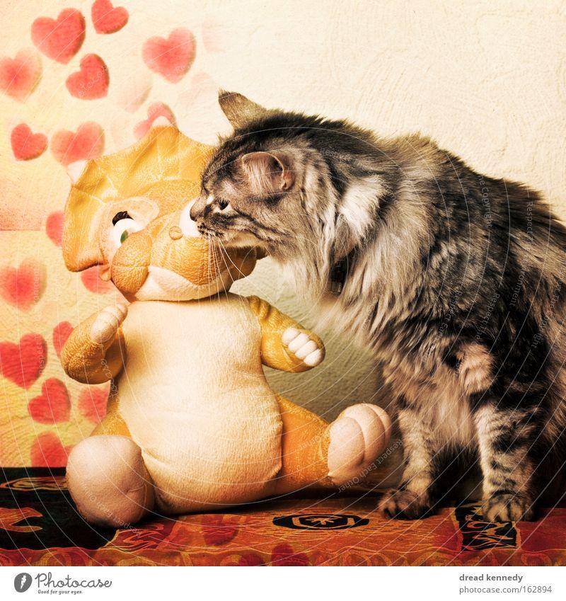 Ei Bisschen Bi Schadet Nie 2.0 Katze Liebe Spielen Glück lustig Zusammensein Herz niedlich Romantik Kommunizieren Fell berühren Spielzeug Küssen Leidenschaft Symbole & Metaphern