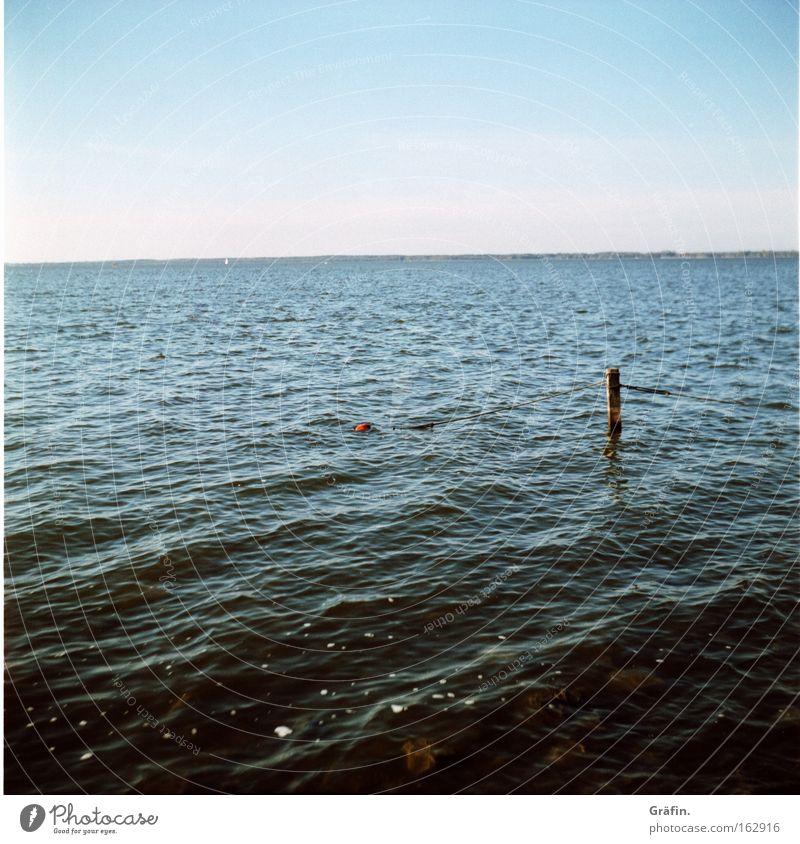 Weit draußen Meer Wasser Ferne blau Himmel Unendlichkeit Sehnsucht ruhig Wellen Horizont Aussicht Steinhuder Meer Küste kräuseln