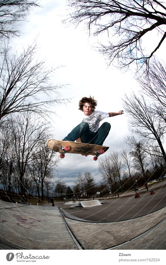 saisonstart II Natur Jugendliche Baum Stil Sport fliegen springen Park Aktion Holzbrett Skateboarding Freestyle Funsport Air