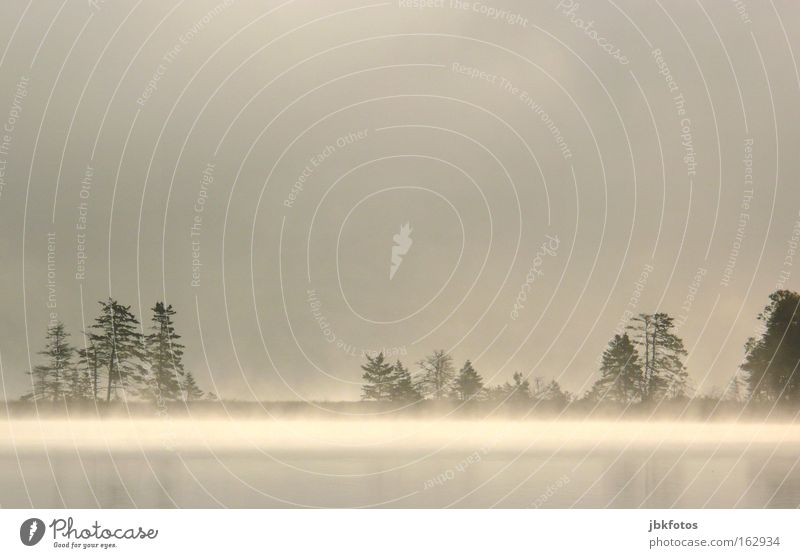 Ein Morgen in Kanada See Nebel Sonnenaufgang Baum Silhouette Reflexion & Spiegelung Spiegelbild Wasser Urelemente Licht Schatten Einsamkeit Wolken Angst Panik
