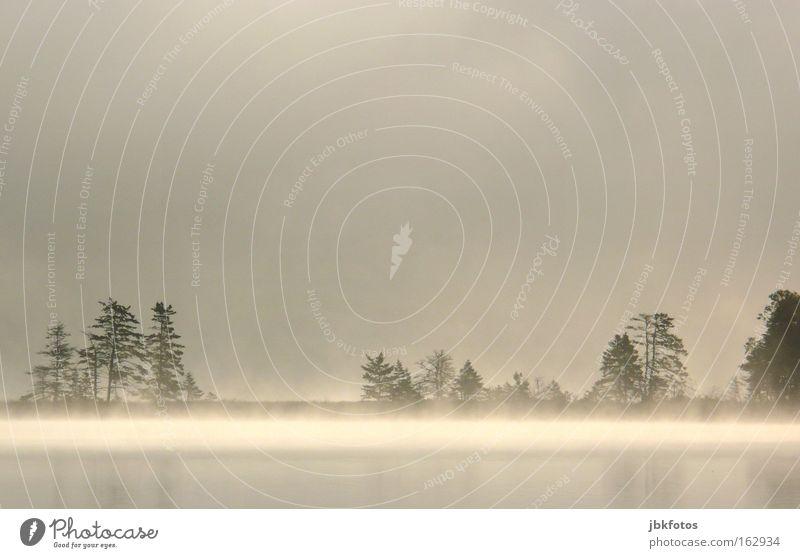 Ein Morgen in Kanada Wasser Baum Wolken Einsamkeit See Angst Nebel Trauer Verzweiflung Urelemente Panik Spiegelbild