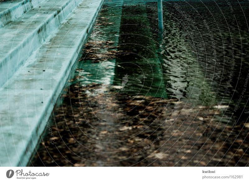 pool III Wasser Blatt Spielen dreckig nass Zeit Schwimmbad tauchen Vergänglichkeit verfallen Verfall Leiter Algen Freibad