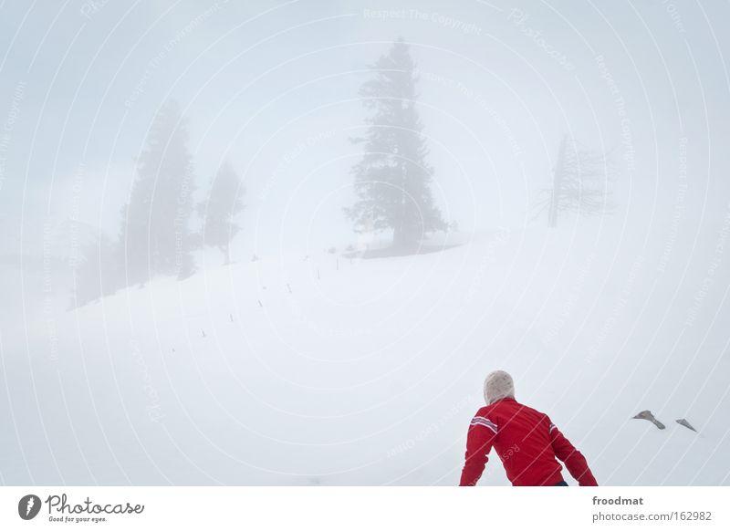 800 - wo geht's lang Himmel Baum Winter kalt Berge u. Gebirge Rücken Nebel trist Suche Schweiz Sturm Surrealismus sehr wenige