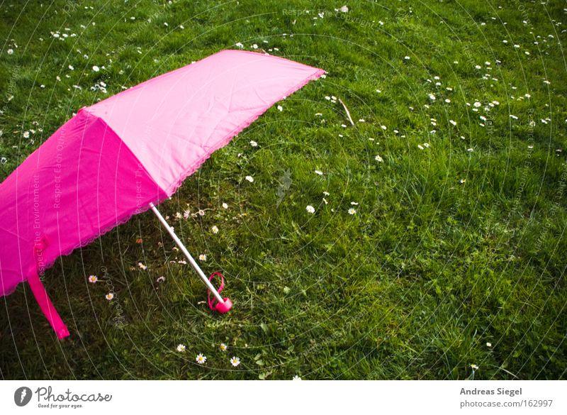 [Harusaki|DD] Pink auf Grün grün Sommer Freude Wiese Gras Frühling rosa Freizeit & Hobby Regenschirm Sonnenschirm Gänseblümchen Leichtigkeit