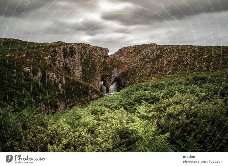 bufones Umwelt Natur Landschaft Pflanze Himmel Wolken Horizont Sommer Wetter schlechtes Wetter Sträucher Moos Farn Hügel Felsen Schlucht Wellen Meer