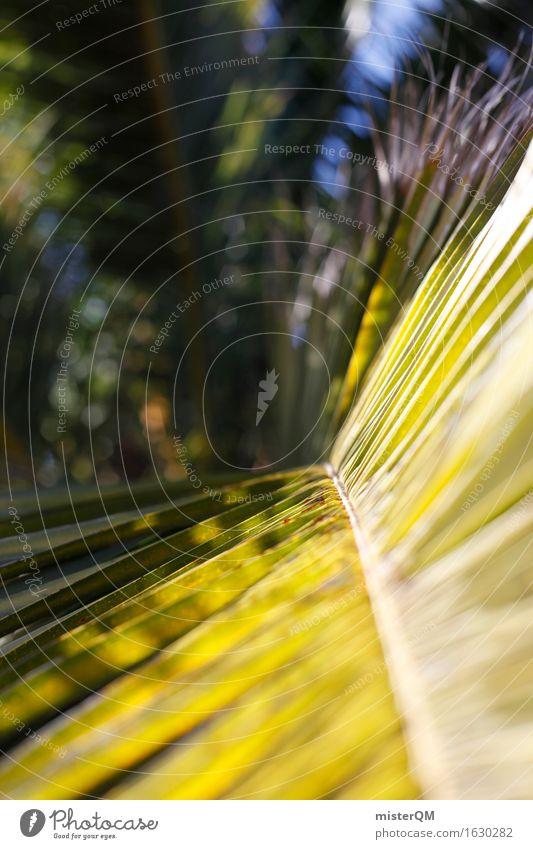 Palmenwedel Kunst Kunstwerk ästhetisch Palmenhaus Palmentapete Ferien & Urlaub & Reisen Urlaubsfoto Sommer Sommerurlaub grün Strukturen & Formen Wellness