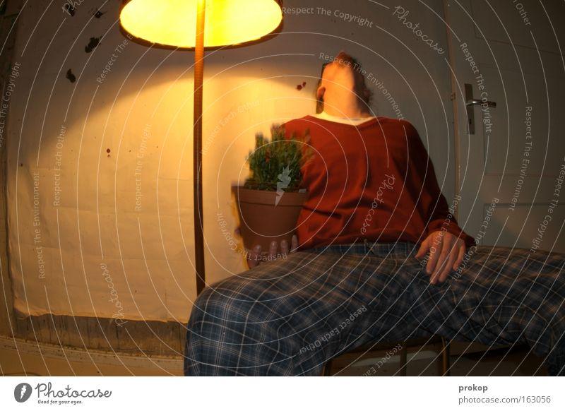 Feierabend mit Blumenstrauß Mensch Mann Blume Lampe Erholung Raum hoch sitzen heiß Alkoholisiert Wohnzimmer Langeweile dumm Rauschmittel Rausch simpel
