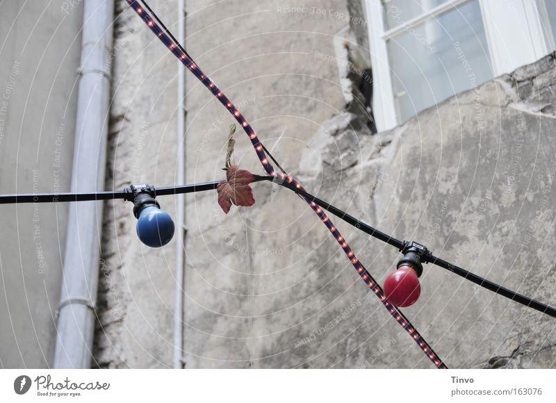 ...und nachts mit Beleuchtung alt Wand Feste & Feiern Dekoration & Verzierung Hinterhof Glühbirne Herbstlaub Verbundenheit Nachbar kreuzen Fallrohr