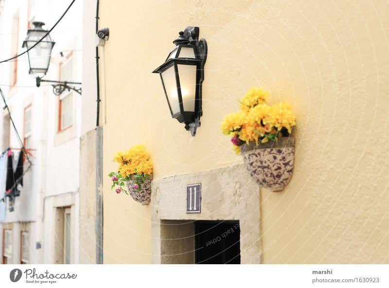 Nummer 11 Dorf Stadt Hauptstadt bevölkert Haus Mauer Wand Fassade Tür Namensschild Briefkasten Gefühle Stimmung Eingang Eingangstür Lampe