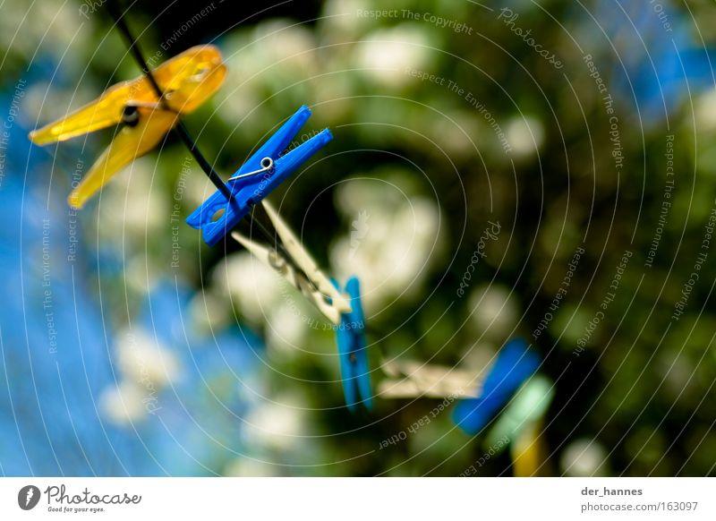 ClipClap Wäscheklammern mehrfarbig blau gelb weiß Wäscheleine Unschärfe Brennpunkt Sommer trocknen leer Blüte Farbe Frühling Bekleidung