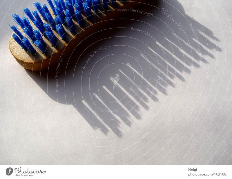 Frühjahrsputz.... blau weiß Holz braun Arbeit & Erwerbstätigkeit dreckig Reinigen Küche Sauberkeit Bad Kunststoff Dienstleistungsgewerbe anstrengen Haushalt fleißig Bürste