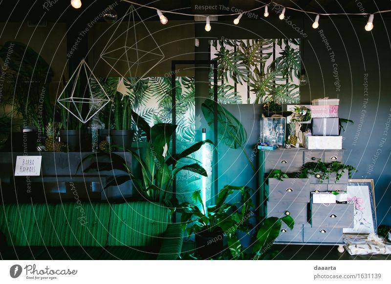 grüne Stimmung Zimmer schön Freude Leben Innenarchitektur Stil Lifestyle Freiheit Party Lampe Design Wohnung Häusliches Leben Freizeit & Hobby elegant