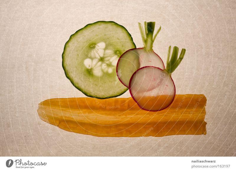 Gemüsescheiben - Gurke, Radieschen und Karotte Möhre geschnitten Gesundheit Ernährung Vegetarische Ernährung Vegane Ernährung raphanus sativus cucumis sativus