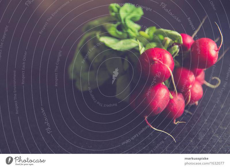 urban gardening frische bio radieschen Stadt Gesunde Ernährung Leben Essen Lifestyle Garten Lebensmittel Freizeit & Hobby genießen Blühend Fitness Küche