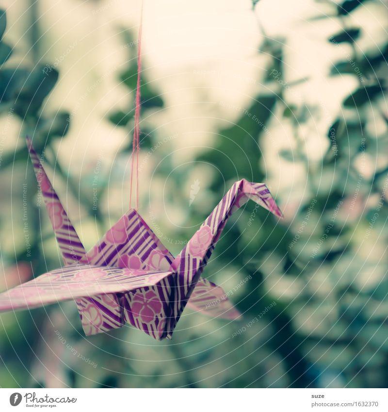 Flugsaurier Stil Design harmonisch Freizeit & Hobby Basteln Dekoration & Verzierung Kunst Vogel Papier fliegen ästhetisch Kitsch klein niedlich grün rosa