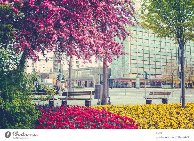 Florierende Stadt Pflanze grün Baum rot Haus Umwelt Straße gelb Architektur Blüte Frühling Gebäude rosa Stadtleben Wachstum