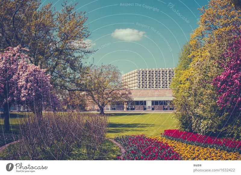 Stadtgarten Pflanze blau grün rot Umwelt gelb Architektur Blüte Frühling Wiese Lifestyle Gebäude Garten Tourismus rosa