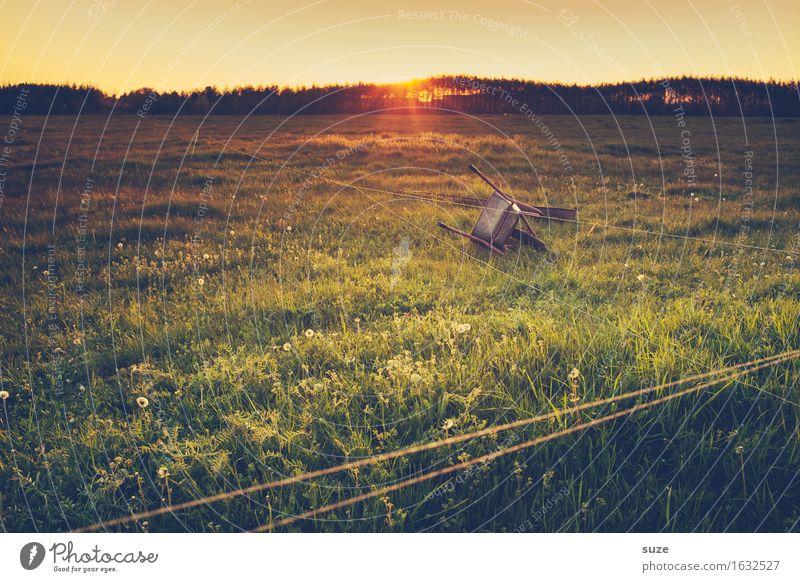 Fahrerflucht Natur alt Sommer Landschaft Wiese Gras Stimmung Feld Idylle Vergänglichkeit Romantik Vergangenheit Landwirtschaft Weide Bauernhof Grundbesitz